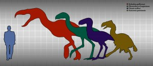 Prehistorical birds