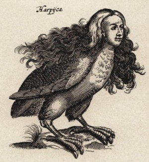 Mythological harpy