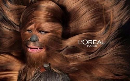Chewbacca groomed