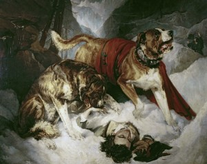 Mountain dogs returning to consciousness a traveler in difficulty