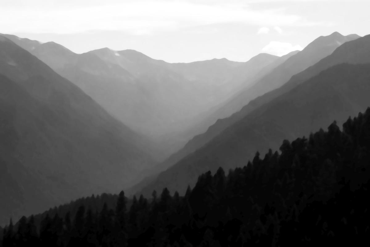 Grey Wolf Valley