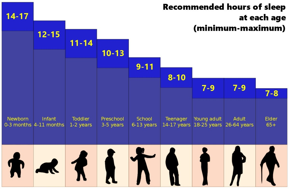 The recommended number of sleep hours