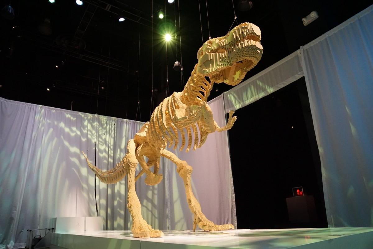 Tyrannosaurus rex from bottom up