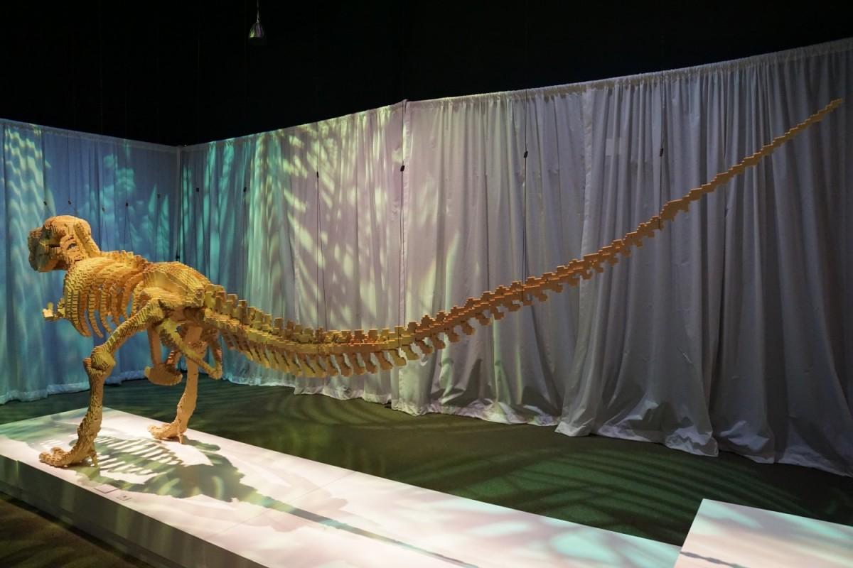 Tyrannosaurus rex - back